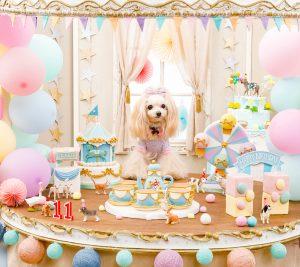 シュガーケーキ 遊園地 スイートテーブル キャンディーテーブル 愛犬撮影 メリーゴーランドケーキ 観覧車ケーキ ティーカップケーキ